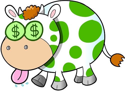 Turn a Holiday House into a Cash Cow